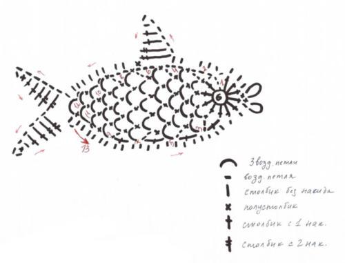 fish12-2