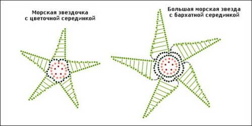 morskie-zvezdy3